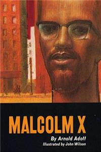 ePub Malcolm X download