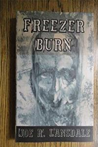ePub Freezer Burn download